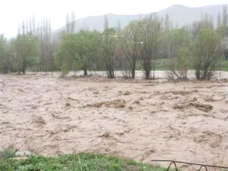 خسارت ۴۰ میلیارد تومانی سیل و باران به بخش کشاورزی بردسکن