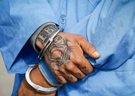 یک نفر از اراذل و اوباش خیابانی كاشمر دستگیر شد