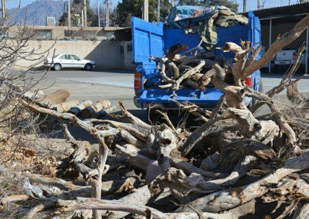 توقیف محموله طاق كويري و چوب قاچاق در كاشمر