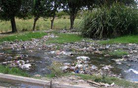 گریبان محیط زیست ترشیز در دست گردشگران غیرحرفهای
