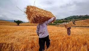 استفاده از تکنولوژی نوین تولیدات کشاورزی را افزایش میدهد