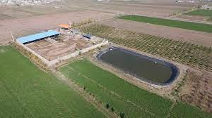 90 درصد استخرهای ذخیره آب غیرمجاز است